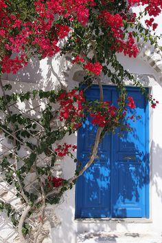 Greek blue door and red bougainvillea Beautiful Flowers, Beautiful Places, Foto Art, Love Rose, Greek Islands, Doorway, Windows And Doors, Red Roses, Red Flowers