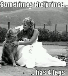 <3 Sometimes the prince has four legs!! so true!!
