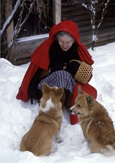 Winter, her red cape covers the ever present apron, and her Corgi pals are at the ready. Don't you love the basket?