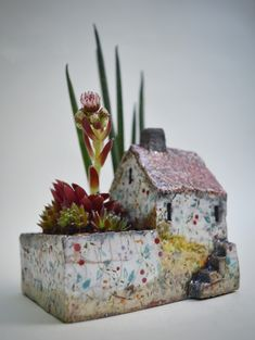 Little raku house with small garden of succulents decorated with bespoke underglaze transfers Chocolate Box, Ceramic Pottery, Decorative Boxes, Asia, In This Moment, Christmas Ornaments, Holiday Decor, Bespoke, Succulents