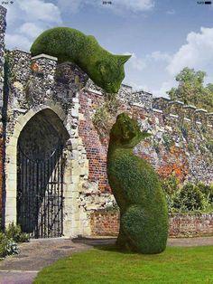 Topiary in Hertfordshire, UK; photo by Richard Saunders Topiary Garden, Garden Art, Garden Design, Topiaries, Cat Garden, Topiary Plants, Urn Planters, Garden Types, Richard Saunders