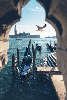 Venice, Seagull flying over the sea. Venetian gondolas with the Basilica of San Giorgio as background