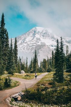 11 Incredibly Beautiful Hikes In Washington State Worth The Sweat - The Mandagies North Cascades National Park, Mount Rainier National Park, Pacific Coast, Pacific Northwest, West Coast, Oregon Coast, Places To Travel, Places To Visit, To Infinity And Beyond