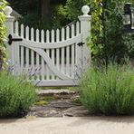 Use climbing foliage and flora to blur garden planes, hide unsightly features and soften imposing landscape boundaries
