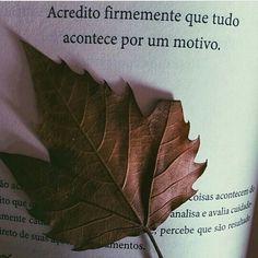 "Alguns Pedaços (@algunspedacos) on Instagram: ""Believe """