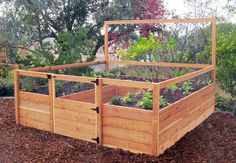 Gardens To Gro™ - Ready Made Vegetable Gardens