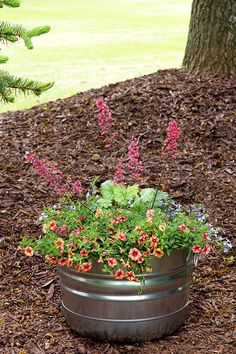 Creative Flower Container Gardening | Garden Design, Ideas ... on easy permaculture ideas, easy travel ideas, easy composting ideas, easy landscaping ideas, easy diy ideas, easy topiary ideas, easy christmas ideas, easy spring ideas, easy container plant ideas, easy entertaining ideas, easy container flower gardening, easy food ideas, easy garden, easy woodworking ideas, easy fall ideas, easy flower gardening ideas, flowers for flower pots ideas, easy sewing ideas, easy recycling ideas, easy xeriscaping ideas,