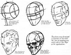 Znalezione obrazy dla zapytania andrew loomis head planes
