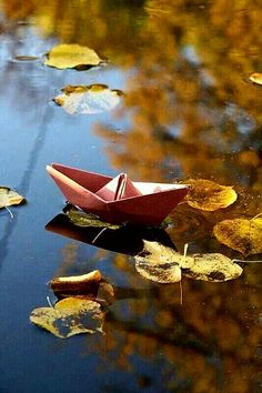 """Not the ocean, she wanted just a puddle to sail her paper boat"" - K. Autumn Scenery, Autumn Trees, Autumn Leaves, Cute Photography, Creative Photography, Fall Pictures, Autumn Day, Fall Harvest, Autumn Inspiration"