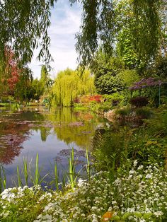 Monet's Water Garden 2 At Giverny by Alex Cassels Beautiful World, Beautiful Gardens, Beautiful Places, Nature Aesthetic, Landscape Photographers, Dream Garden, Pretty Pictures, Beautiful Landscapes, Aesthetic Pictures