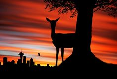 Background In High Quality - deer Sunset Silhouette, Silhouette Painting, Animal Silhouette, Silhouette Projects, Silhouette City, Sunset Wallpaper, Photo Wallpaper, Hirsch Silhouette, Desktop Pictures