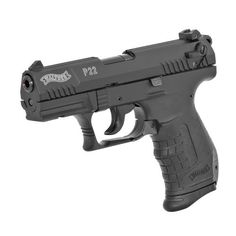 Walther P22 .22LR Pistol. The only gun that ever made sense for me. Cheap ammo for a fun plinker.