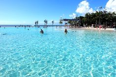 From visiting the Great Barrier Reef to feeding a humongous crocodile to cuddling a koala, there's no lack of fun things to do in Cairns!