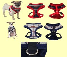 New Scholastic (Winter) Harness from Puppia. This harness comes into 2 great colour choices (red or navy) and is available in small, medium, large and xlarge. It retails for $27.00 on www.puppiaharness.ca Choices, Dog Cat, Disney Characters, Fictional Characters, Colour, Navy, Medium, Winter, Red