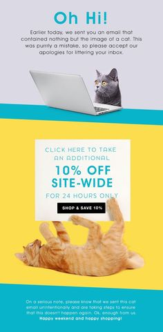 Fab's brilliant email campaign following an earlier email being accidentally sent. Good save.