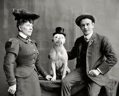 vintage pitbull photos - Google Search
