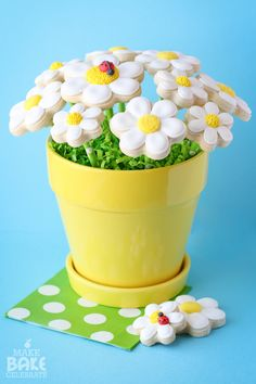 Cookie pop daisy bouquet - perfect for Mother's Day!