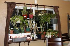 Window plant shelves greenhouse indoor garden for Ways to hang plants inside
