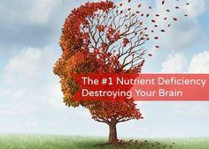 The Number One Nutrient Deficiency Destroying Your Brain HypothyroidMom.com #thyroid #brain