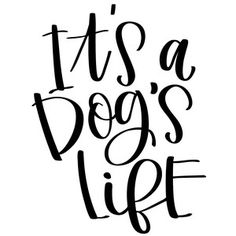 Silhouette Design Store: it's a dog's life