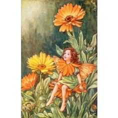 Gerbera Fairy Vintage Wall Art