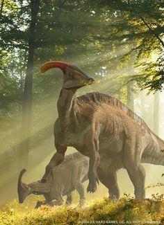 Parasaurolophus; Late Cretaceous, 76.5–73Ma; Ornithopoda (hadrosaur); Discovered by Parks, 1922