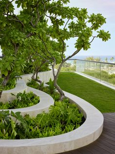 Award winning San Francisco based Landscape Architecture and Urban Design Firm Surfacedesign Inc. Landscape Design Plans, Landscape Concept, Landscape Architecture Design, Urban Landscape, Landscaping With Rocks, Modern Landscaping, Backyard Landscaping, Landscaping Ideas, Landscaping Borders