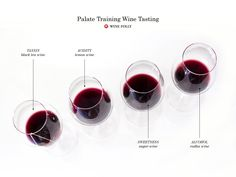 This guide intends to offer an outline on how to improve your wine knowledge (as a beginner) and includes certain activities that you can start tonight! #Wine #Wineeducation