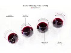 DIY Palate Training Wine Tasting | Wine Folly