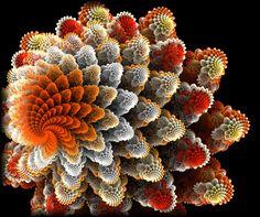 Apophysis: Урок Коралловый фрактал. -> Demiart