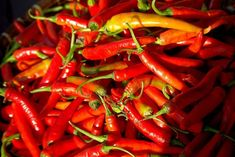 Thai Peppers: Heated Confusion, But Always Spicy! Thai Peppers, Thai Dishes, Chicken Chili, Stuffed Hot Peppers, Spicy Recipes, How To Cook Chicken, Confusion, Tomatoes, Squirrels