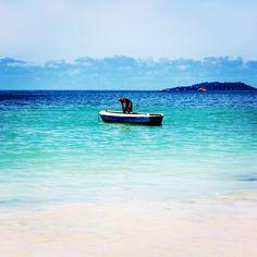 Seychelles, Fishing in Praslin, Blue Is Life