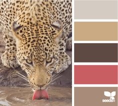 color lap design seeds hues tones shades  color palette, color inspiration cards #hues #tones #shades #colorpalette #colorinspiration #designseeds