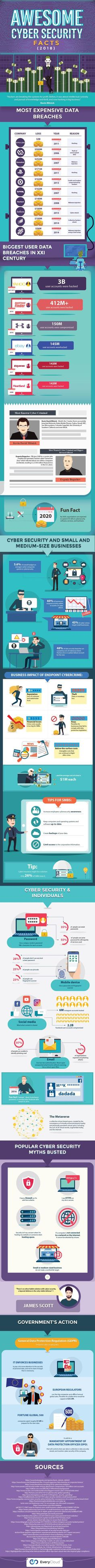 Internet Data Breaches Realm: Fascinating Cyber Security Facts (infographic) / Digital Information World What Is Cyber Security, Cyber Security Threats, Security Training, Security Tips, Web Security, Security Systems, Cyber Security Awareness, Cyber Warfare, Ignorance