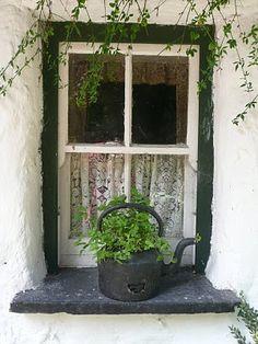 Irish window sill -- looks like one I took at the Bunratty Folk Park.