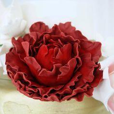 Consulta esta foto de Instagram de @delicatessepostres • 83 Me gusta Rose, Instagram Posts, Artist, Flowers, Pictures, Pink, Artists, Roses, Royal Icing Flowers