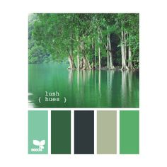 Design Seeds ❤ liked on Polyvore featuring design seeds, colors, backgrounds, palettes and color schemes