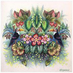 Perfeito d+!!!!! @Regrann from @rpenze -  #MagicalJungle #selvamagica #artecomoterapia #coloring #coloriage#johannabasford #livrosdecolorir #coloredpencils #coloringbook #lapisdecor #rpenze #Regrann