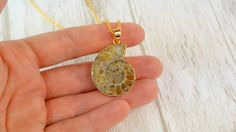 Necklace with a natural ammonite, gold-plated on edges. Long-lasting, anti tarnish plating. The chain is gold-plated over copper. Nickel and lead free.