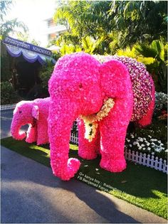 una chulada!!!! -- kanya boy - Google+ - Elephant made from the flowers Agricultural Fair 2014 at…