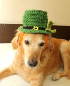 Leprechaun Hat for Dogs, St Patricks Day Dog Hat, Bearded Leprechaun Dog Costume, St Patricks Day Dog Costume, Bearded Dog Hat - pinned by pin4etsy.com