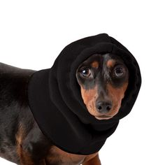 Black Dachshund Dog Hood, great for warmth and laying with our dog rain coat. High performance material. Made in the USA.