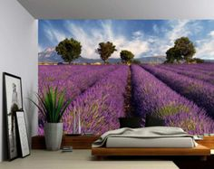 Lavender Field Provence - Large Wall Mural, Self-adhesive Vinyl Wallpaper, Peel & Stick fabric wall decal