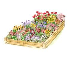 Conquer tough soil by growing up with this raised bed filled with gorgeous annuals.