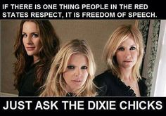 I knew when the Bush/Cheney crime family screwed these women over we were all in for good f-cking! - Nicky J.