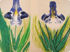 IMG_2698  http://letsgoflyakiteuptothehighestheight.blogspot.com/2012/05/crafting-with-my-kids-van-goghs-irises.html