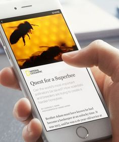 Update: Now Publishing the New York Times and More with 'Instant Articles' Program. Facebook News, About Facebook, Facebook Marketing, Mobile Marketing, Marketing Digital, Media Marketing, Facebook Content, Marketing Communications, Social Marketing