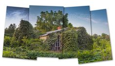 This is the Summer time shot of the Kudzu house on Hwy 231. I shot it in winter (on this board) I wanted to shoot the same shot, but could not because the vegetation next to the road blocked it.
