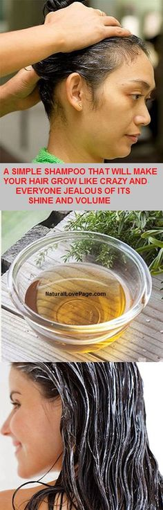 A SIMPLE SHAMPOO THAT WILL MAKE YOUR HAIR GROW LIKE CRAZY AND EVERYONE JEALOUS OF ITS SHINE AND VOLUME