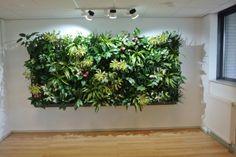 Impressies | KOEN Interieurbeplanting Green Wall, Gallery, Green, Wall Gallery, Wall
